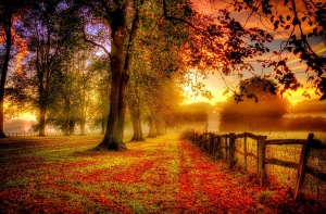 jesień ursynów mokotów warszawa
